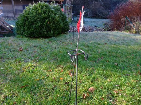 zebra rot weiß (1).JPG